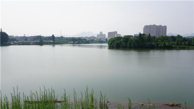 海寧市學習浦江五水共治的速度與激情